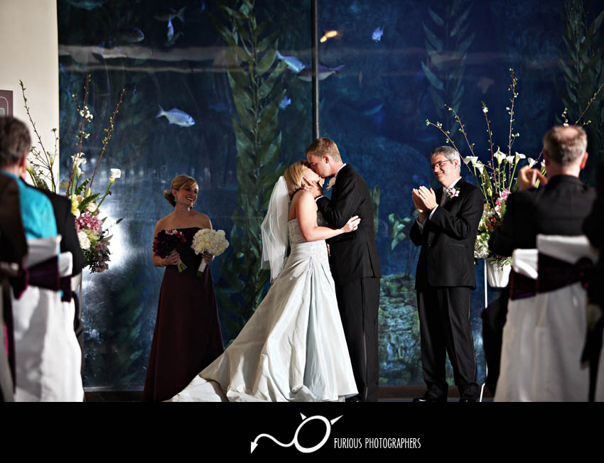 Long Beach Aquarium of the Pacific Wedding Photography Los