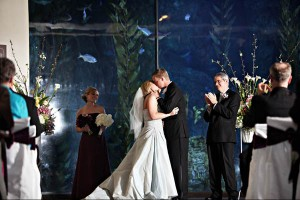 aquarium-of-the-pacific-long-beach-wedding-photography